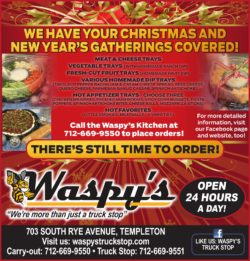 waspys flyer