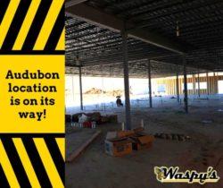 Waspy's Audubon