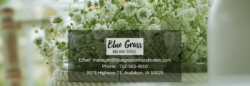 blue grass inn and suites banner