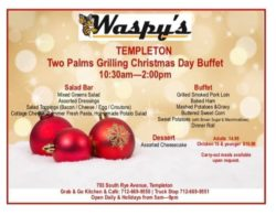 two palms grilling christmas buffet