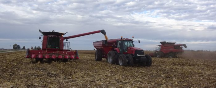 Two Case IH red combines, a red tractor and grain wagon in field harvesting corn