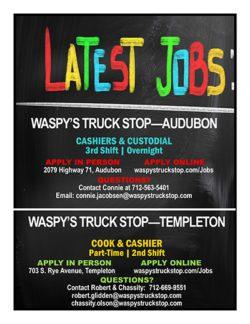 Waspy's jobs